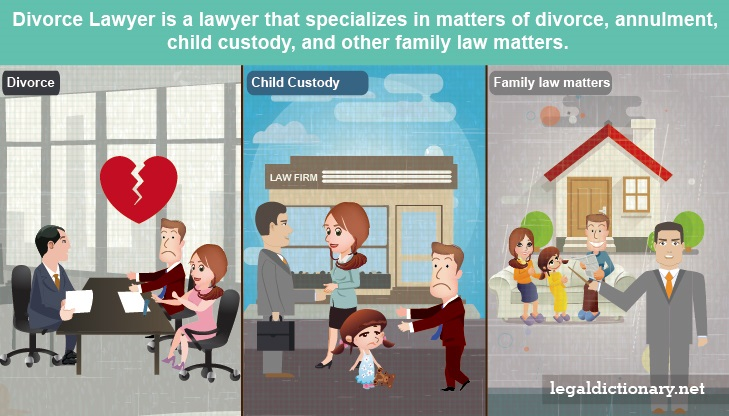 Divorce Lawyer Definition Examples Cases Processes